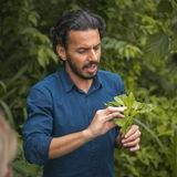 Dr. Elias Pereira 🍎🥑
